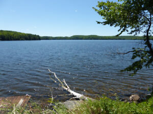 2.2 acres, $3,499 down, 10-acre open mtg, near Loon lake, $335mo