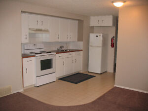 Basement Suite for 1 person includes utilities