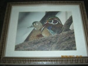 "Pair of Wood Ducks - Artist unknown.  Frame is 18.5""x14.5"""