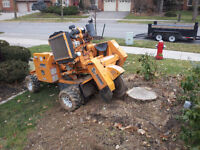 Stump Removal / Stump Grinding / Tree Removal Pruning / Chipping
