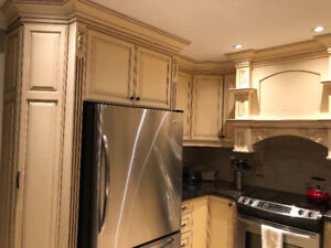 Complete - Wood Kitchen with Granite Counter Tops -Price Reduced