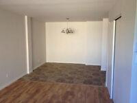 Appartament a louer- 655 $- Pierffonds-Disp 1Juillet ou 1 Aout