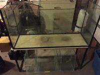 75 gallons with sump fish tank