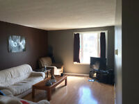 2 Rooms for Rent in October near Downtown Fernie