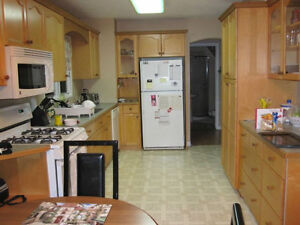 1st year SLC students - Location + quality 5-bedroom house May 1