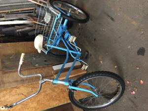 Adult 3 wheel bike