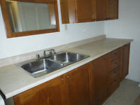 1 bdrm, lower apt, all inclusive, just renovated, near downtown