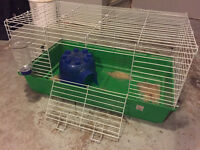 Guinea pig cage, bedding, and accessories for sale.