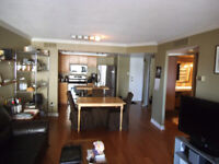 One Bedroom fully furnished rental Downtown -St Lawrence Market