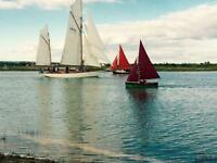 CHEAP FIRST CARAVAN, Steeple Bay, Burnham, Southend, Essex, Hit the Link-->