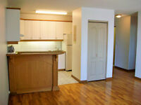 Starting Aug. & Sept. 1st - 1 BDR. APARTMENTS IN FORT RICHMOND