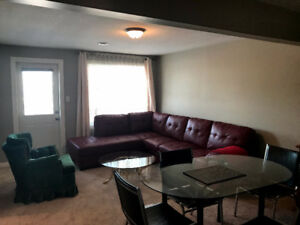 Walkout basement behind Safeway camrose lake view fully furnishe