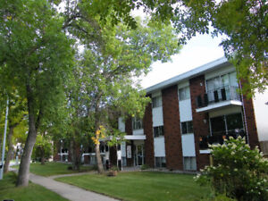 1 Bedroom Apt. - Close to Whyte Ave and River Valley