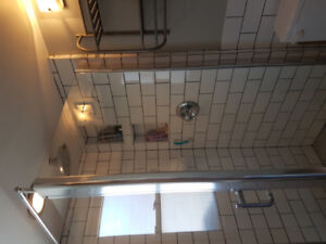 Glass shower enclosure - 6 months old