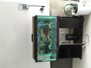 90 Gallon Fish tank