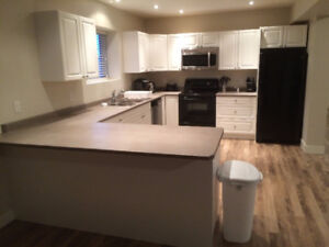 Newly renovated 3 bed, 3 bath lower 1/2 duplex for rent