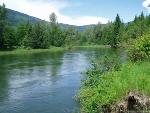 1754 Trans Canada Hwy, Sicamous - 9 Acres Water Front Property!