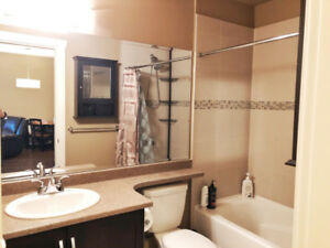 $1369 / 1br - 647ft2 - Condo 1 bdrm all furnished