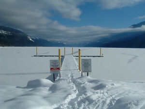 Bachelor suite  Trout Lake BC Revelstoke British Columbia image 2