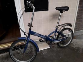 Folding bike Raleigh parkway