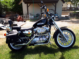 1999 Harley sportster 883 with 1200 kit installed $4500 firm.