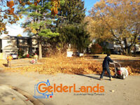 Landscape Maintenance Service--Get ready for the autumn & winter