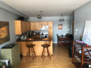 North End Sublet May-August