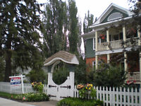 Molstad House: vintage/collectibes sale BY APPOINTMENT ONLY