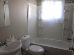 5 Bedroom Bungalow in quiet area of Wildwood, AB Edmonton Edmonton Area image 8