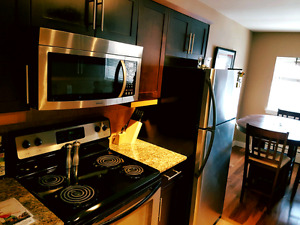 Fully Furnished 2 bedroom Corydon Condo