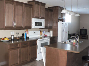 Available Mar 1 - Bright 2 Bedroom Legal Basement  Suite