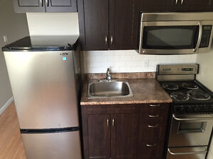 Newly Renovated Bachelor Apartments Available! Stratford Kitchener Area image 2