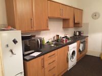 1 Large double Bed flat, Dundee City centre, move in as soon as possible.