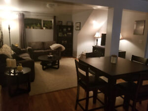 New 2 bedroom daylight basement suite in lower college heights