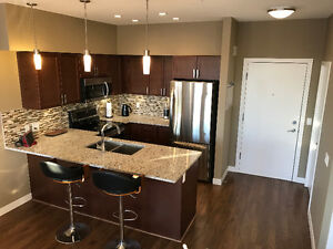 ***2014 NEW BUILD LUXURY CONDO***, (2 bed & 2 bath) $1350/month