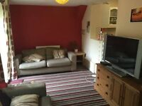 Single Rooms for rent in friendly houseshare