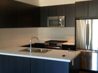 Beautiful NEW 2 BR 2 Bath Condo in Coquitlam with GREAT LOCATION