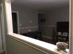 2 bedroom basement apartment separate driveway St. John's Newfoundland image 8