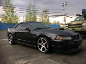 Mustang 2093 4.6 l