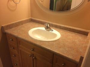Moen bathroom faucet, sink and countertop package