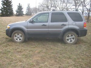 2007 Ford Escape yes SUV, Crossover