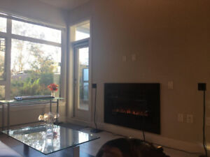 Stunning 1bed/1bath in New West
