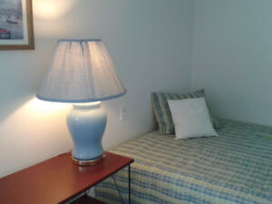 Furnished Level entry 2/Bdr basement Suite in West End Downtown