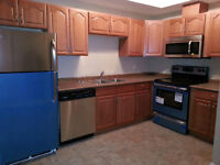 Downtown Brand new 2 bedroom available  immediately