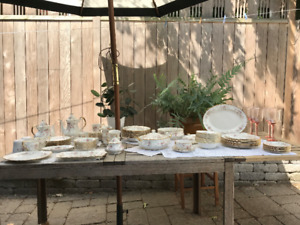 Vintage Royal Albert Paragon VICTORIANA ROSE Dinner Set ++