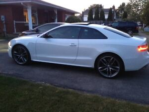 2017 Audi S5 Dynamic Edition Coupe (2 door)