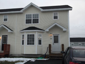 Duplex for rent (Avalon Mall area)!!