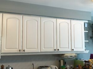 Kitchen Cupboards, Knobs and Counter