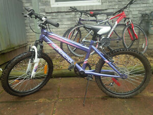 Girls Supercycle - mountain bike style - like new - moving!