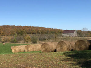 172 ACRE FARMLAND FOR SALE - BEAVER VALLEY